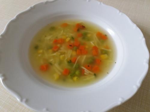 Polévka slepičí snudlemi